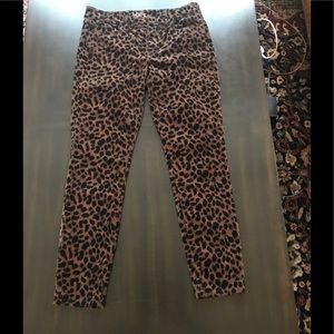 Animal Print Pants. Hot 🔥!